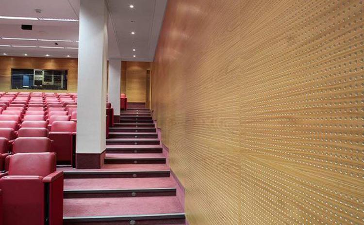 江西新余演讲厅木质穿孔吸音板声学工程