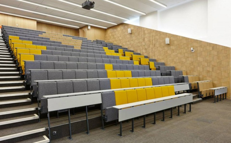 广西玉林学校报告厅木质吸音板声学工程